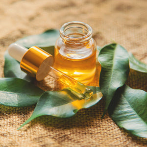Why Is Tea Tree Oil The Most Trending Product Now?