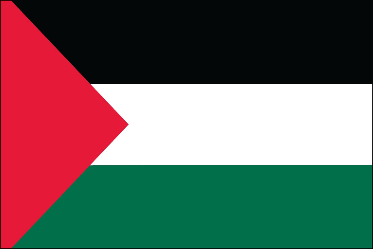 Palestinians Flags