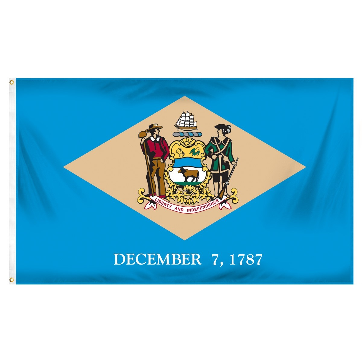 Delaware  2' x 3' Indoor Polyester Flag