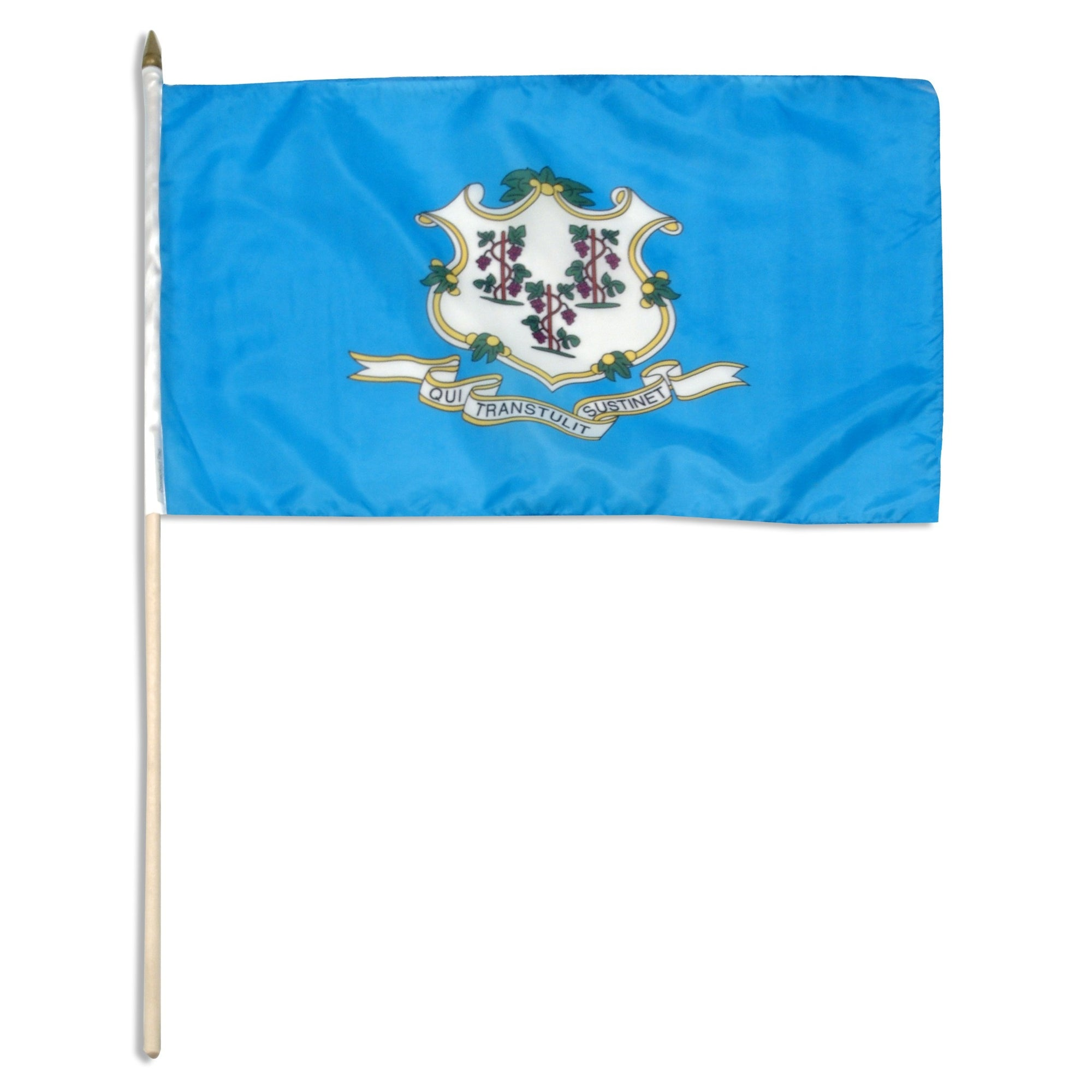 "Connecticut  12"" x 18"" Mounted Flag"