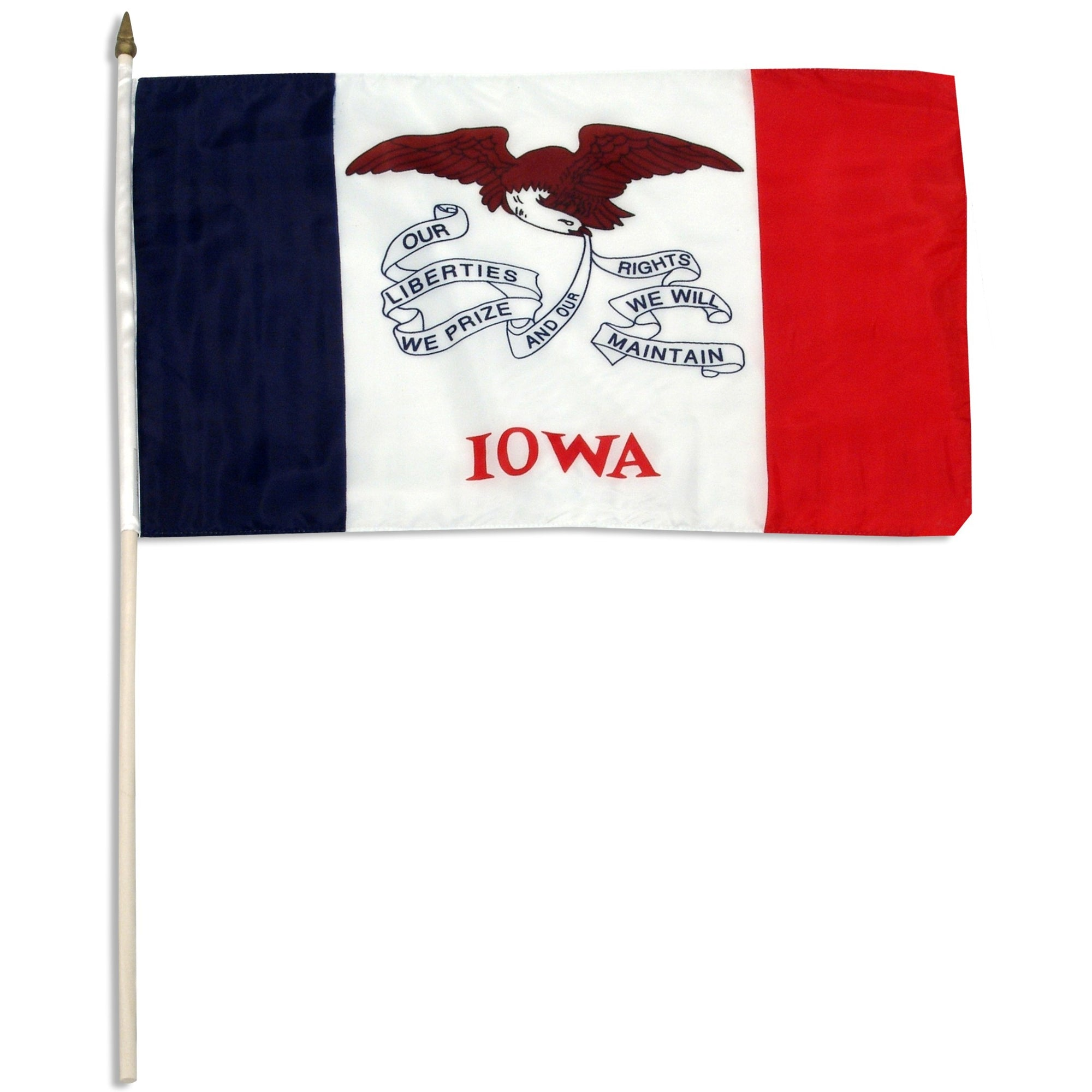 "Iowa  12"" x 18"" Mounted Flag"