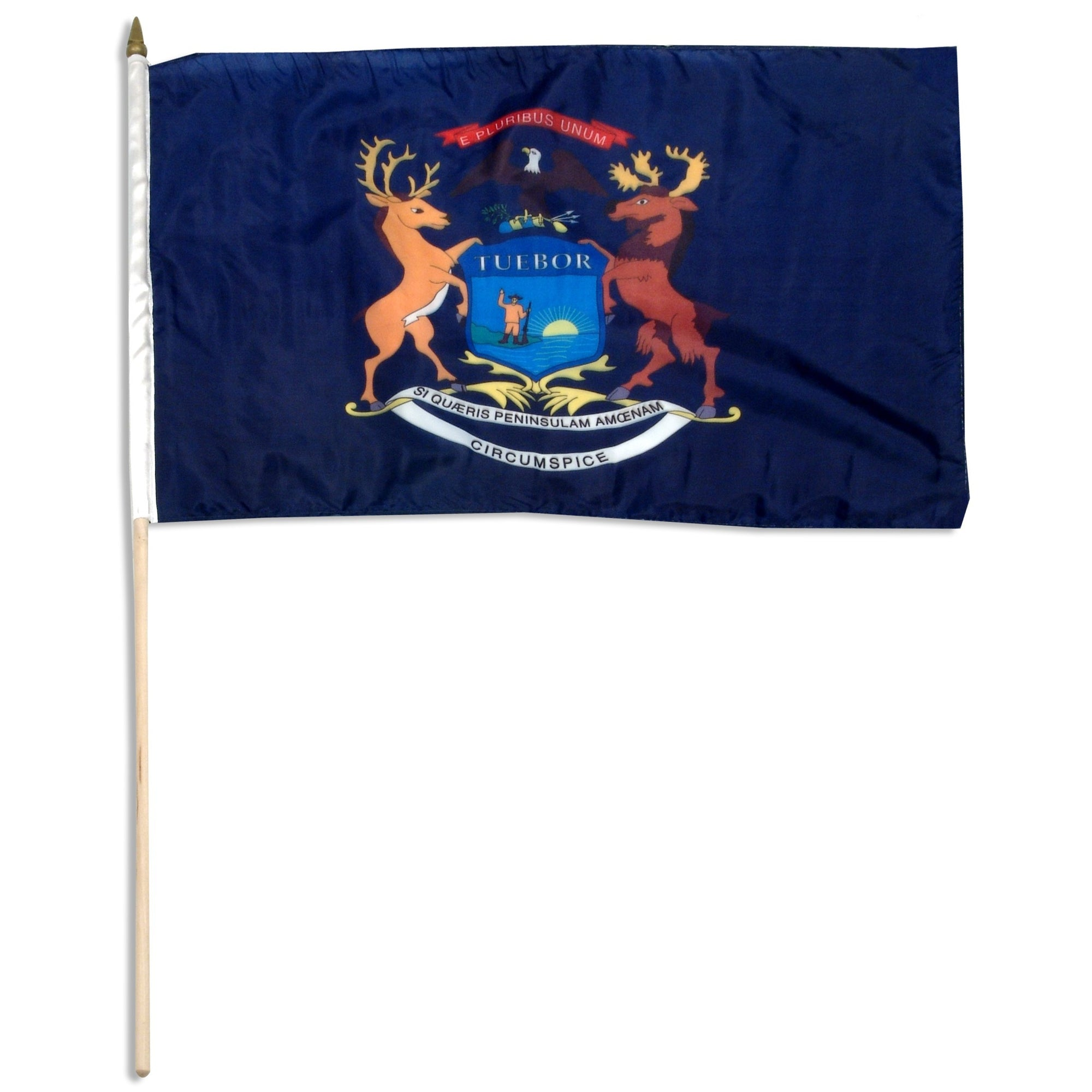 "Michigan  12"" x 18"" Mounted Flag"