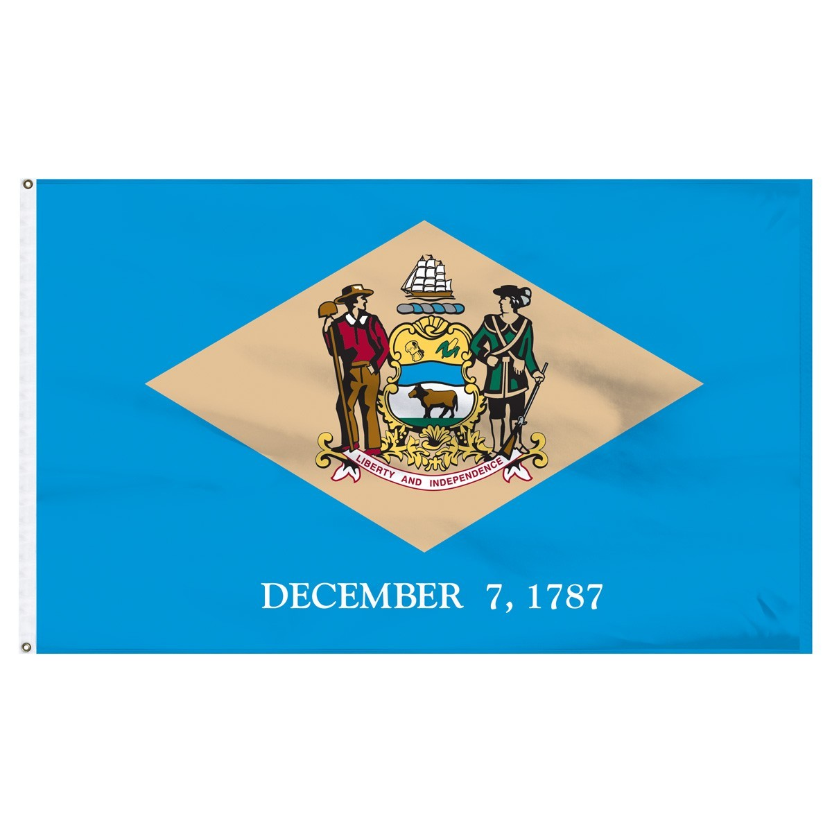 Delaware  3' x 5' Outdoor Nylon Flag