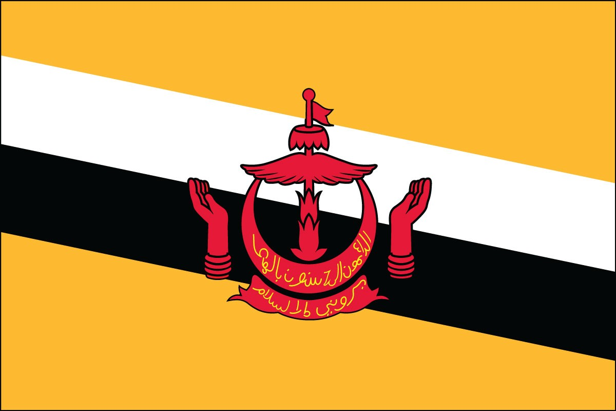 Brunei 2' x 3' Indoor Polyester Flag