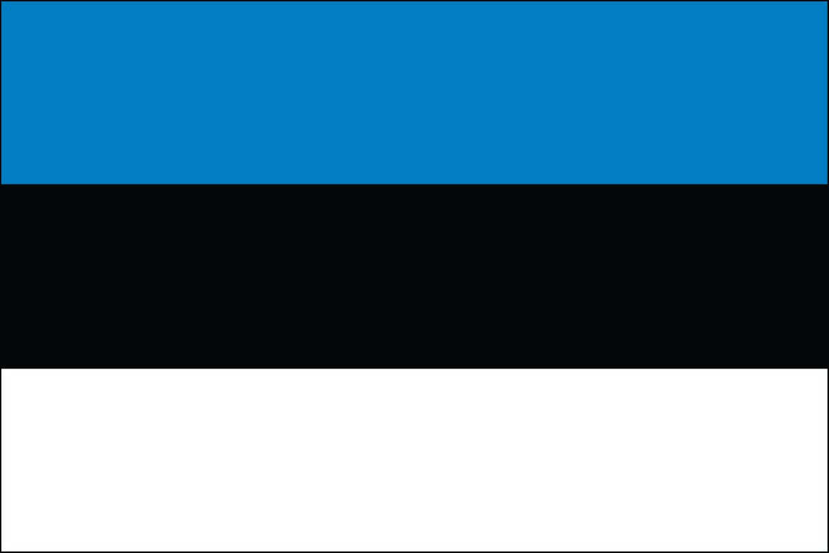 Estonia 2' x 3' Indoor Polyester Flag