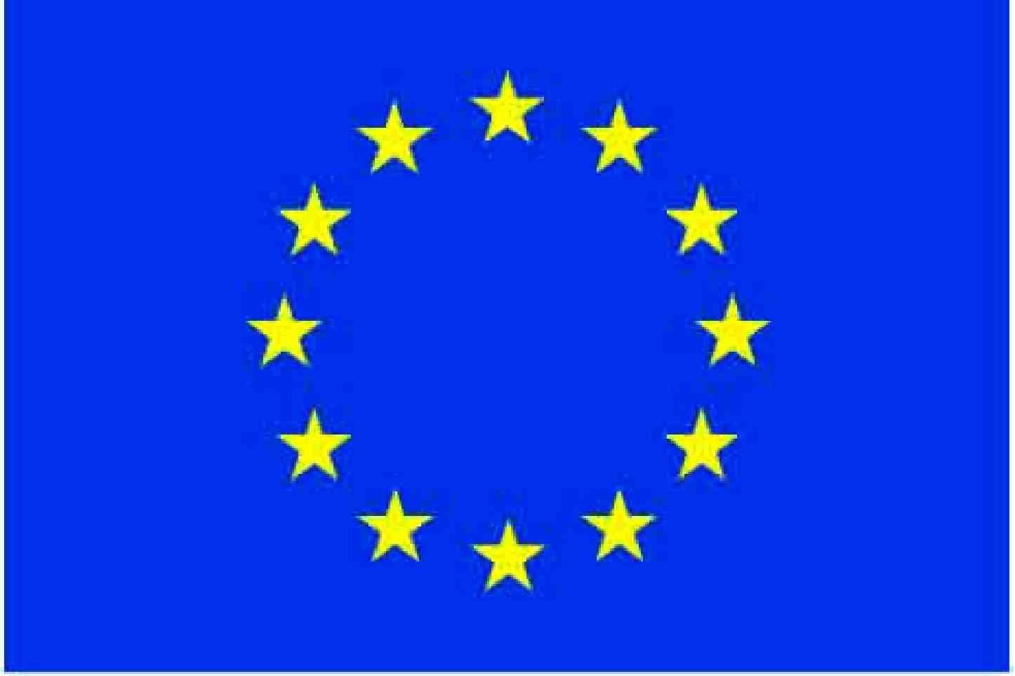 European Union 2' x 3' Indoor Polyester Flag