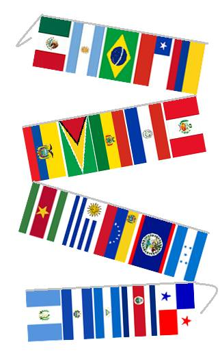 String Flag Set of 20 Latin American Country Flags 30ft