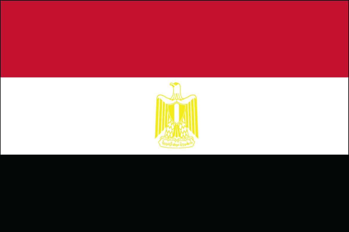Egypt 3' x 5' Indoor Polyester Flag