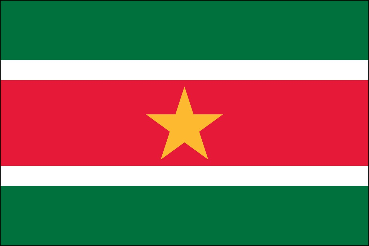 Suriname 3' x 5' Indoor Polyester Flag