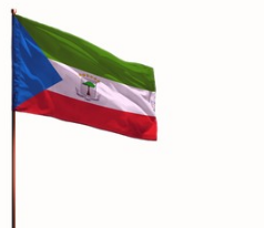 Equatorial Guinea 2' x 3' Indoor Polyester Flag