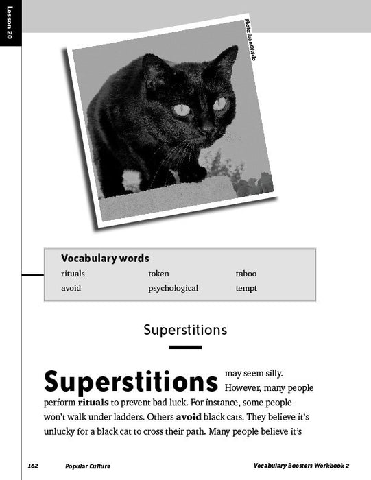 Vocabulary Boosters Workbook 2
