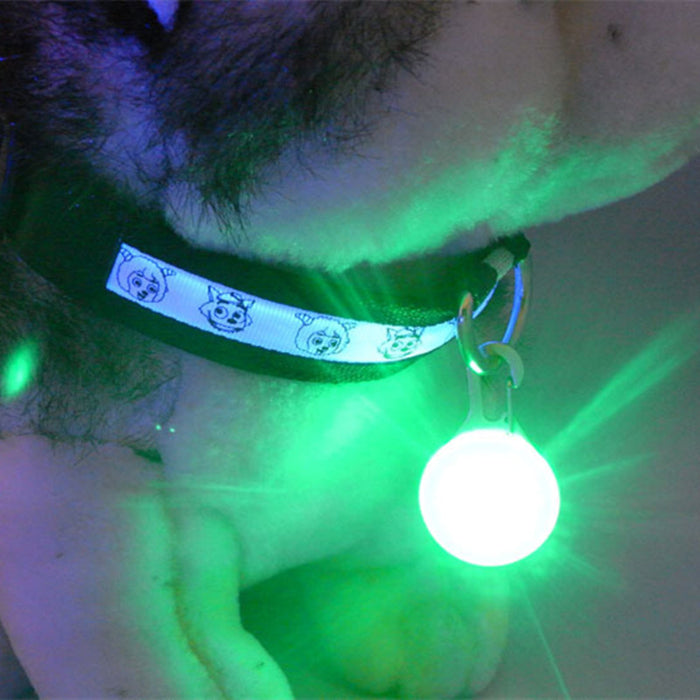 Outdoor Pet safety Flashing 5 Color Dog/Cat LED Collar