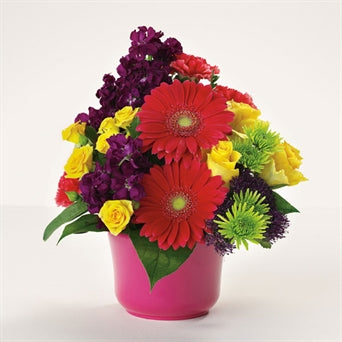 myeasyflowers-Roseae-ROSAS-ROSES_YELLOW-myeasyflowers-GERBERA-GERBERA-GERBERA_RED-myeasyflowers-Dianthus caryophyllus-CLAVEL-CARNATION_RED-pompons-trachelium-bowl-flower arrangement