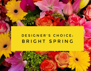 DESIGNER'S CHOICE BRIGHT SPRING