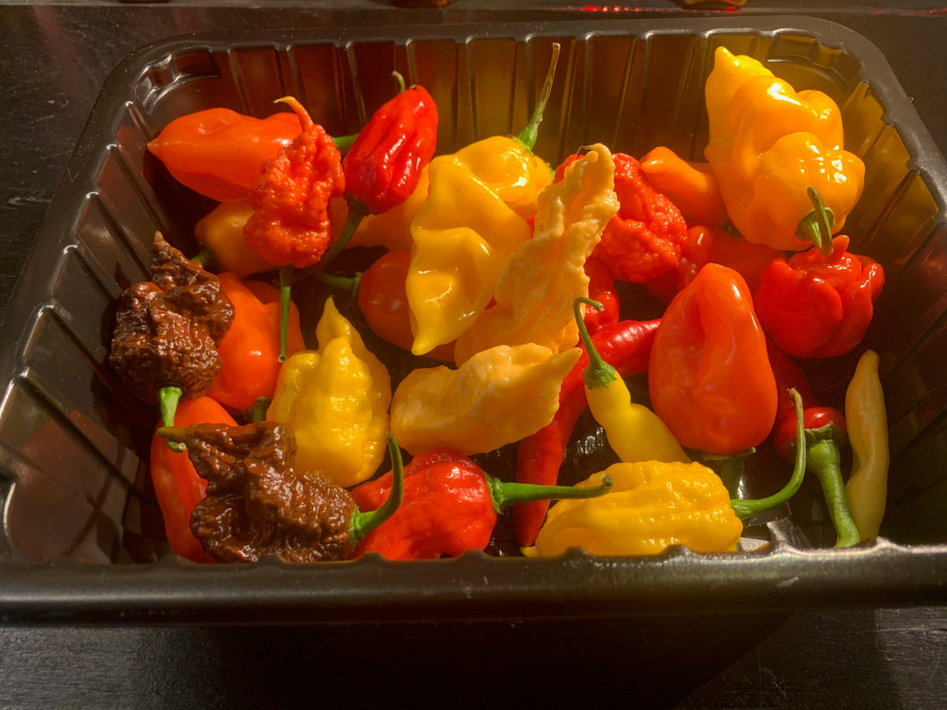 Peppermaster Fresh Pepper Pack