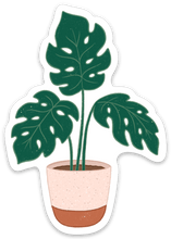Load image into Gallery viewer, Potted Monstera Plant Sticker, 3.5x2 in.