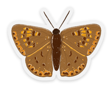 Load image into Gallery viewer, Burnt Orange Moth Sticker, 2x2in.