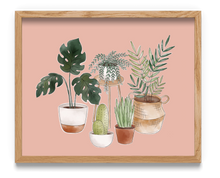 Load image into Gallery viewer, Potted House Plants Art Print