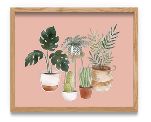 Potted House Plants Art Print