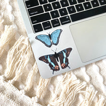 Load image into Gallery viewer, Brown Swallowtail Butterfly Sticker, 3x3in.