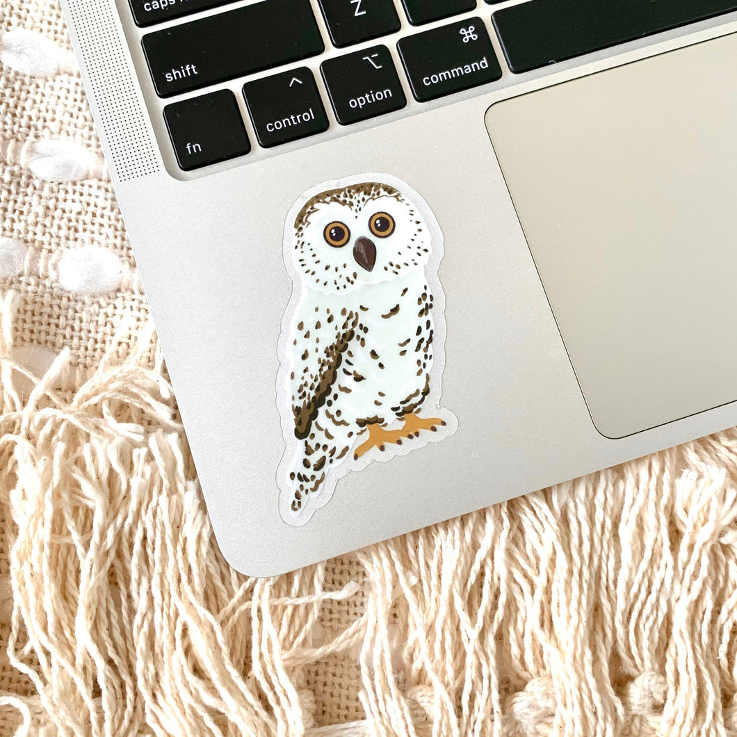 Clear Owl Sticker, 3x2 in.