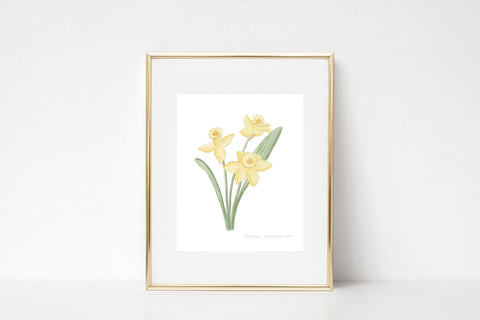 Daffodils Watercolor Wall Art Print