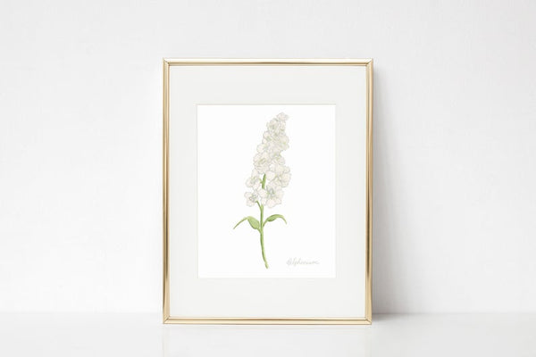 Delphinium Watercolor Wall Art Print