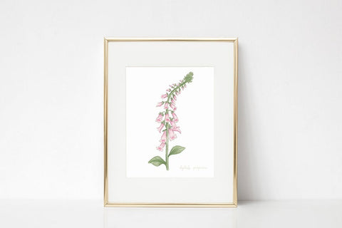 Foxglove Watercolor Wall Art Print