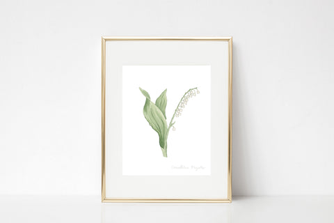 Lily of the Valley Watercolor Wall Art Print