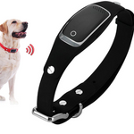 Intelligent Pet Tracker - RAPBLUE