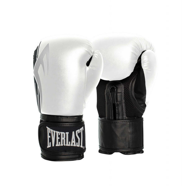 PRO STYLE POWER BOXING GLOVE