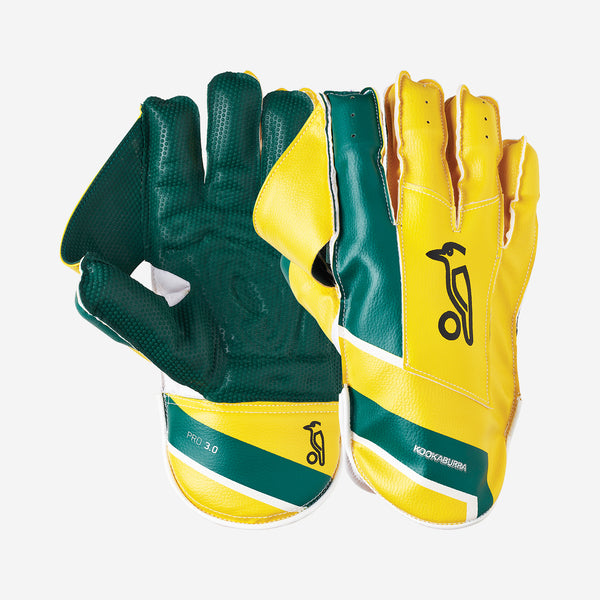 PRO 3.0 WICKET KEEPING GLOVES