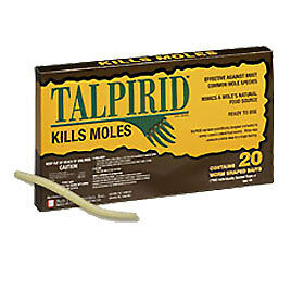 Talprid Mole Worms