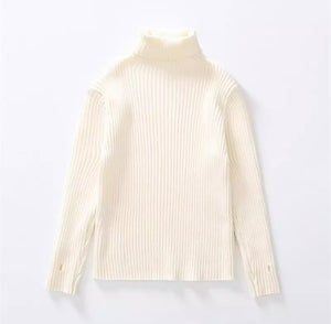 Raida turtle neck sweater