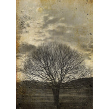 Load image into Gallery viewer, Sepia Tree decoupage paper