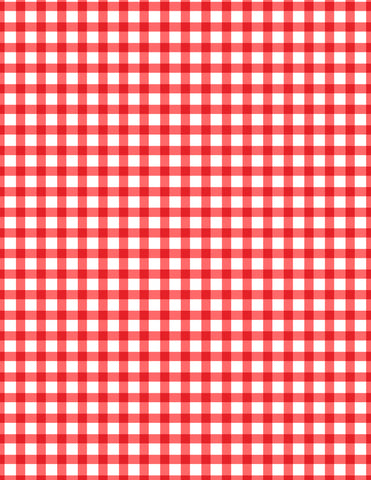 Teacher's Pet Red Gingham Decorative Paper