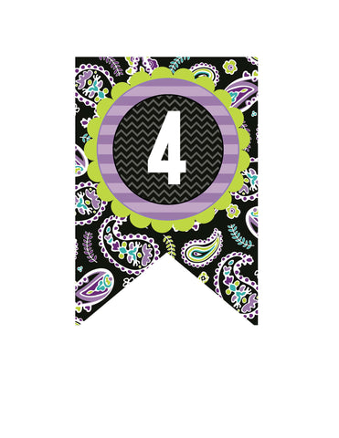 Midnight Orchid Paisley Banner Numbers