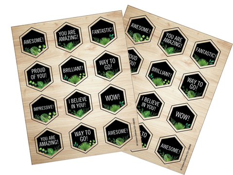 Schoolgirl Style - Simply Boho Hexagon Motivational Stickers