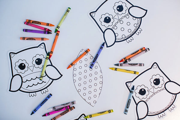 Color My Classroom Owls {UPRINT}