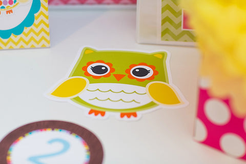Bright Colorful Owl Cut Outs