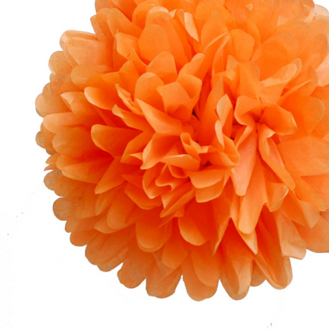 {Orange Crush} Pom