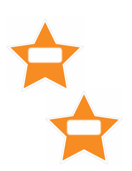 Twinkle Twinkle, You're a Star -  Name Tag Shapes