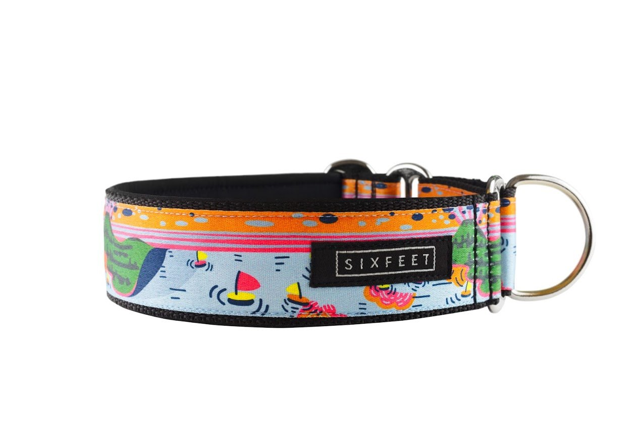 Badacsony Martingale Collar - 30mm wide - sixfeetdogwear