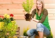 Get Gardening it is the Best Spring Workout Routine