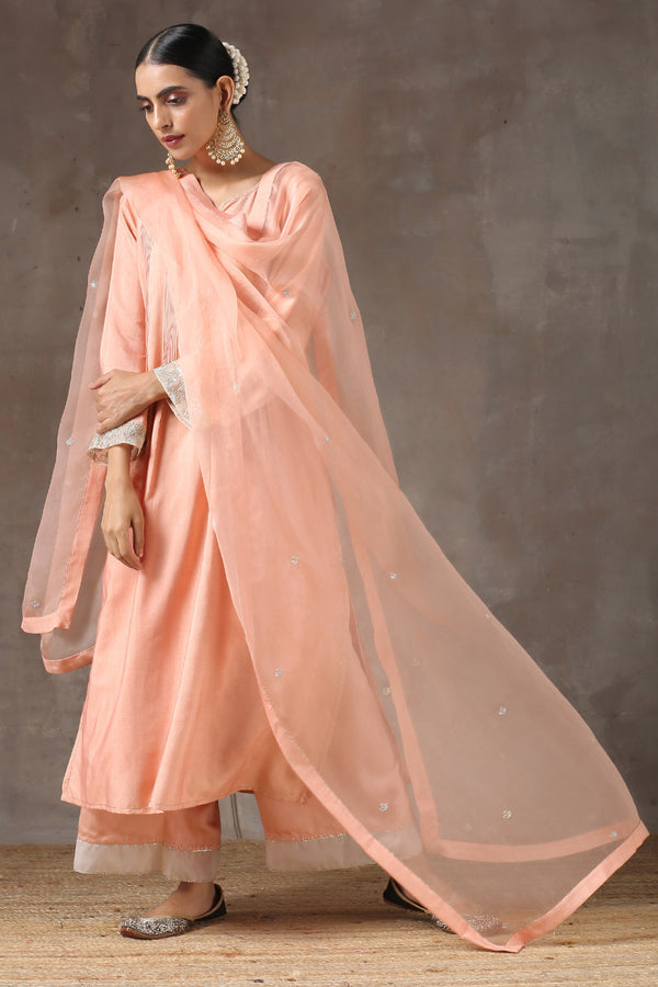 Khoobani Ghera Kurta with Jama and Organza Dupatta