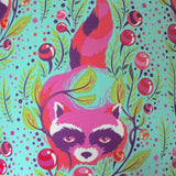 Close up image of pink raccoon on an aqua background