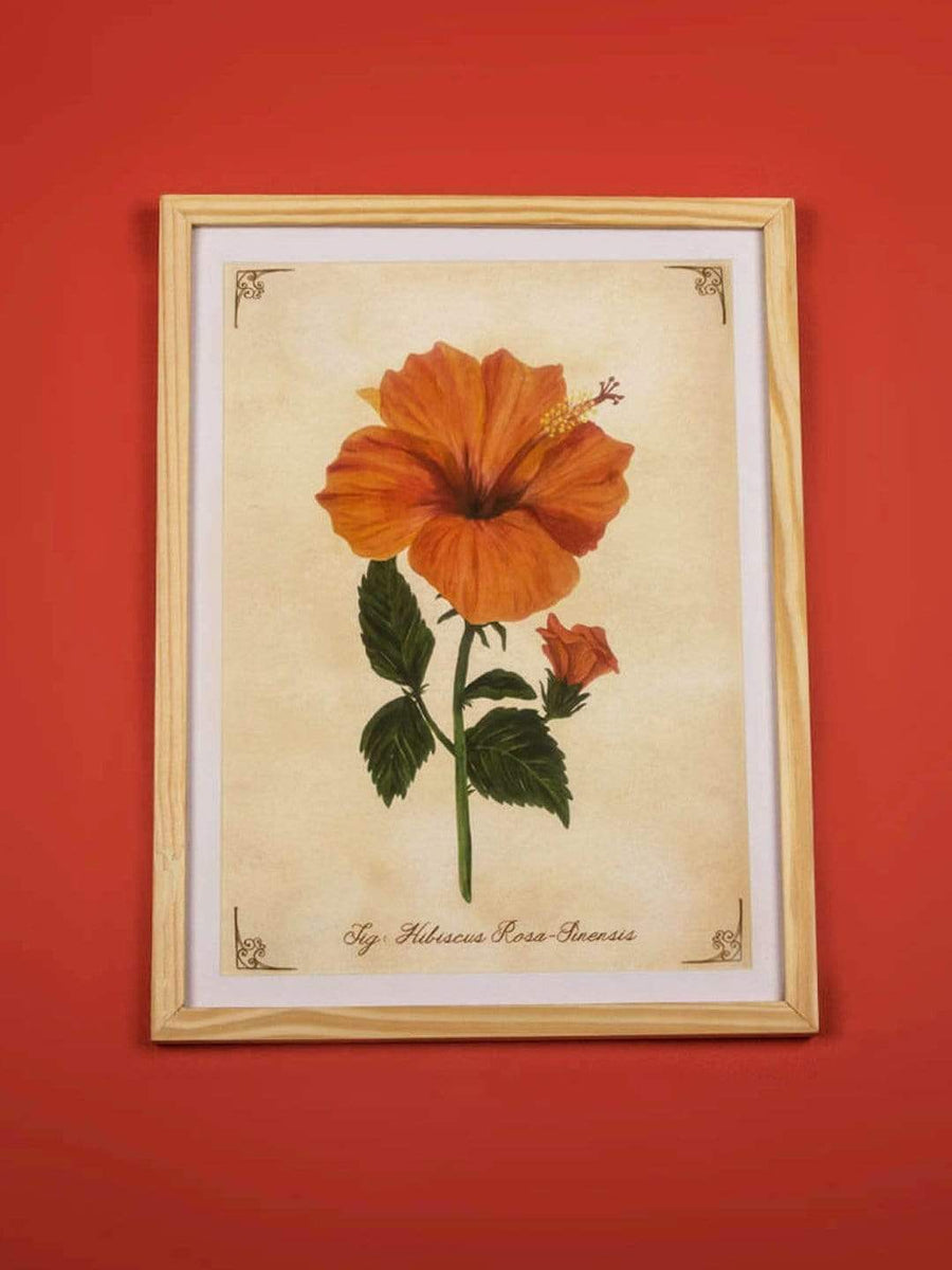 Hibiscus Wall Frame