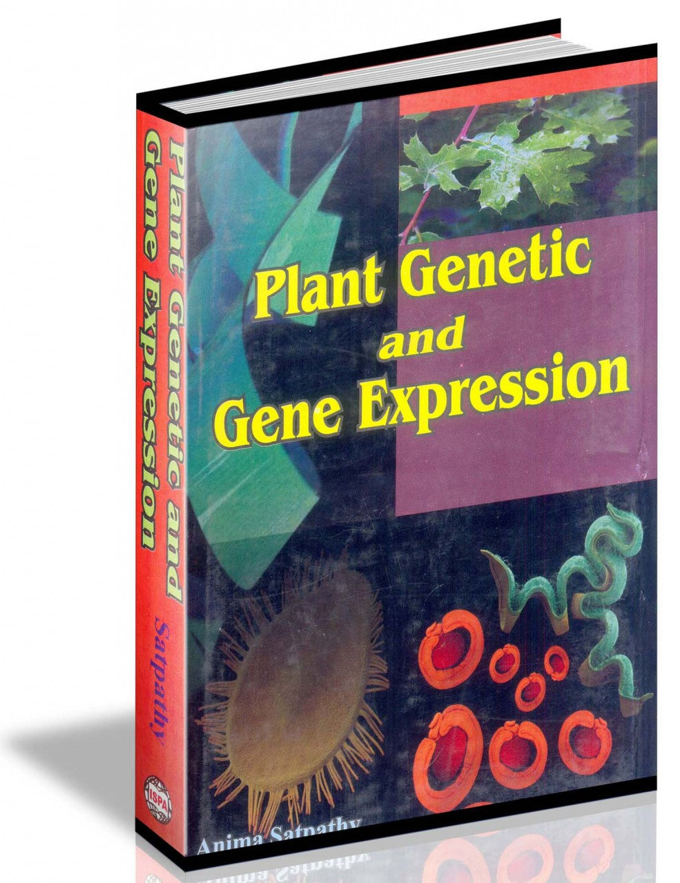 Plant Genetic and Gene Expression