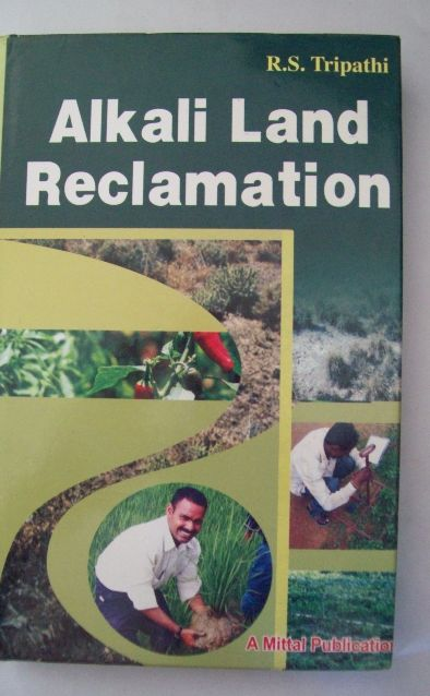 Alkali Land Reclamation
