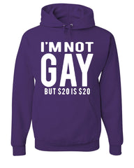 I'm Not Gay But $20 Is $20 Hoodie Funny Sweatshirt - Tee Hunt - 3